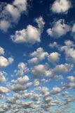 Altocumulus white puffy fluffy clouds against deep blue sky. Landscape background Stock Image