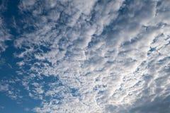 Altocumuluswolken und blauer Himmel Stockbilder