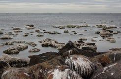 Altona strand Royaltyfria Foton