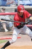 Altoona Curve batter Drew Maggi Royalty Free Stock Image
