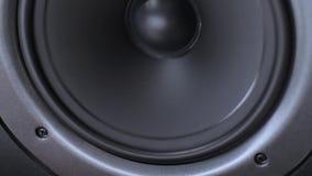 Altoparlante di vibrazione stock footage