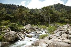 Altopiani, Boquete, Chiriqui, Panama1 immagine stock
