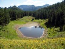 Altopiano Altai, montagna Altai 12 Immagine Stock