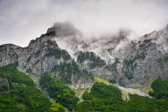 Altos acantilados y bosque en el pie fotografía de archivo
