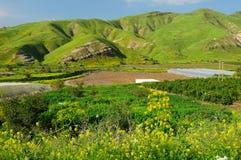 Altos do Golán. Fotos de Stock Royalty Free