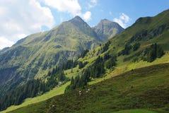 Altos montan@as y pasto cerca de Tenna, Suiza Imagenes de archivo