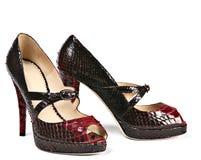 Altos zapatos Fotografía de archivo libre de regalías