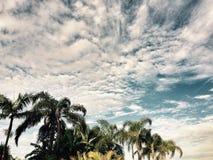 Altowy cumulus zdjęcie stock