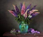 Altramuces en un florero Todavía la vida con un ramo de jardín florece Fotografía de archivo