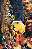 Altsaxophon in Herbst Park Lizenzfreies Stockbild