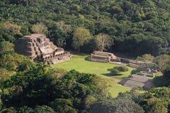 Altun brzęczenia, majowie ruiny obraz stock