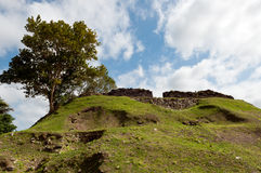 Altun Ha Royalty Free Stock Photos