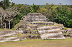 Altun ha stockbild