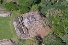 Altun Ha, maya ruins Royalty Free Stock Photo