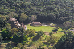 Altun Ha, maya ruins Stock Photos