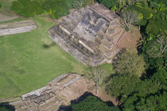 Altun Ha, maya ruins Stock Photo