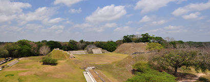 Altun Ha panorama Royalty Free Stock Image