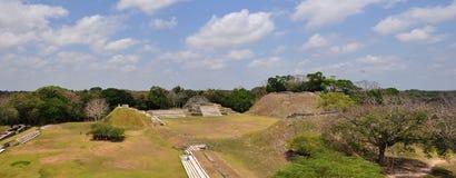 Altun Ha panorama. Ruins of mayan site in belize called Altun Ha royalty free stock image