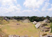 Altun Ha panorama. Ruins of mayan site in belize called Altun Ha stock images