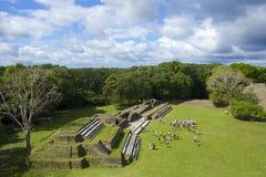 Altun Ha plats i Belize Arkivfoto