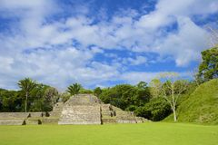 Altun Ha site in Belize. Mayan site of Altun Ha in Belize, Caribbean Royalty Free Stock Images