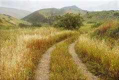 Alture del Golan Fotografia Stock