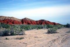 Altyn-Emel nationalpark, kanjon Ak-Tau Royaltyfria Bilder