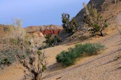 Altyn-Emel nationalpark, kanjon Ak-Tau Arkivbilder