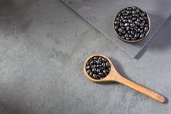 Alubias negras crudas - tortuga vulgaris del negro del ` del Phaseolus Imagenes de archivo