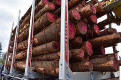 Alucar木材卡车或采伐的卡车 免版税库存照片