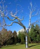 Aluminiowy drzewo obraz stock