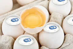 Aluminium eggs Stock Photography