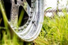 Aluminium förfalskade hjul på det gröna gräset i maskrosor Polska kanter med regndroppar på det och bultar royaltyfria foton