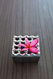 Aluminum ashtray and pink flower Royalty Free Stock Photos