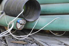 Aluminum Cable Stock Photos