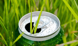 Aluminum can in grass Stock Photo