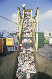 Aluminum cans moving along a conveyor Stock Images