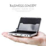 Aluminum case on a small palm isolated Royalty Free Stock Photo