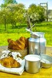 Aluminum milkcan witn organic milk and fresh baked croissants Royalty Free Stock Photos