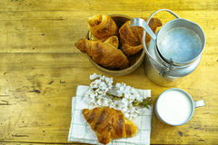 Aluminum milkcan witn organic milk and fresh baked croissants Royalty Free Stock Photo