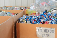 Aluminum Soda Cans Sorted For Recycling. A large box filled with aluminum beverage cans sorted and ready to be recycled stock photography