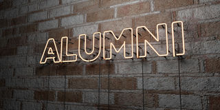 ALUMNI - Glowing Neon Sign on stonework wall - 3D rendered royalty free stock illustration. Can be used for online banner ads and direct mailers Royalty Free Stock Photo