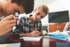 Alumnos masculinos enfocados en la lección Imagen de archivo libre de regalías