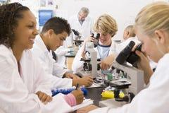 Alumnos y su profesor en clase de la ciencia Imagen de archivo libre de regalías