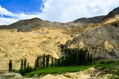 Alune em Lamayuru na Índia de Kashmir imagem de stock