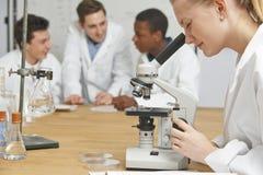Aluno fêmea que usa o microscópio na lição da ciência Fotografia de Stock Royalty Free