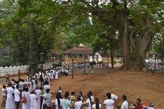 Aluthnuwara Dedimunda Devalaya at Mawanella, Sri Lanka. Flag post at Aluthnuwara Dewalaya Royalty Free Stock Photos
