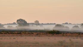 Alvar-Kalkstein machen am frühen Morgen fest Lizenzfreies Stockfoto