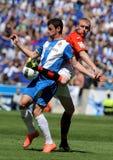 Alvaro-Kämpfe mit Mathieu Stockbilder