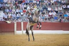 Alvaro Montes, bullfighter on horseback spanish Royalty Free Stock Images